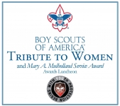 Boy Scouts of America award logo